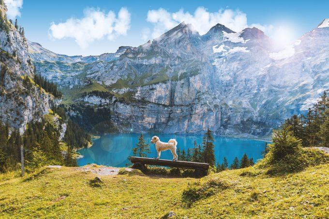 スイスの景色その2