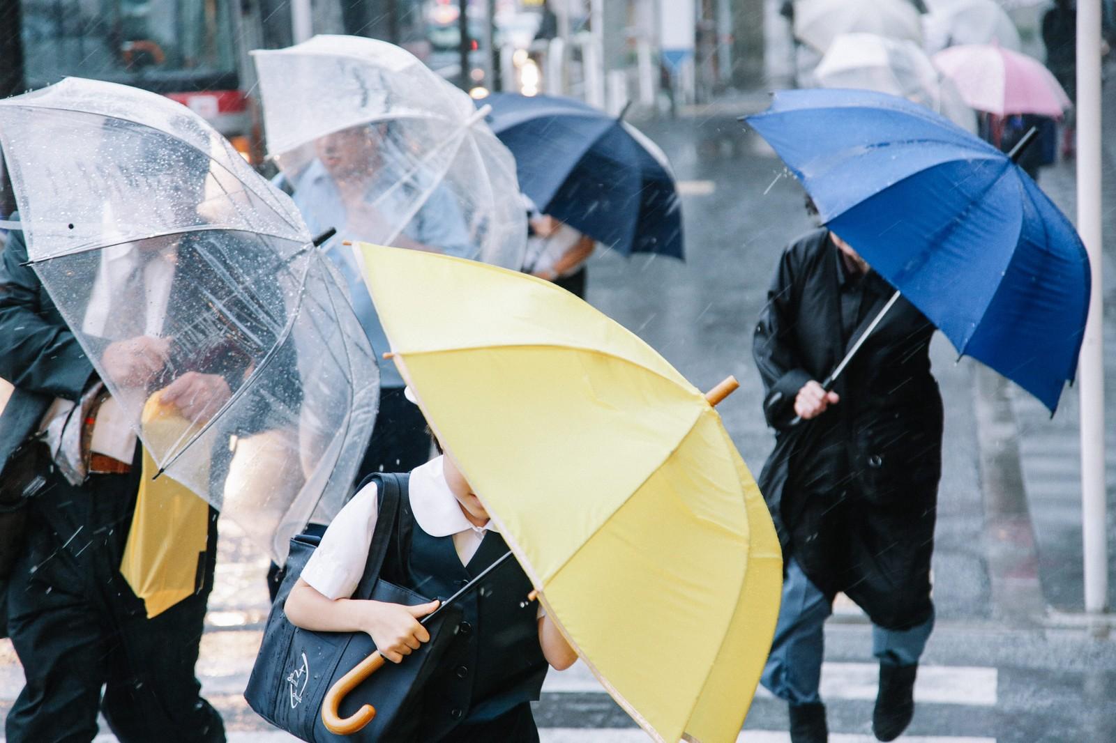 大雨で傘をさす人たち