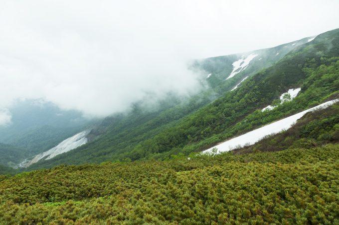 雨が降りそうな山の天気